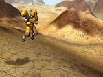 Hoppin in the Desert